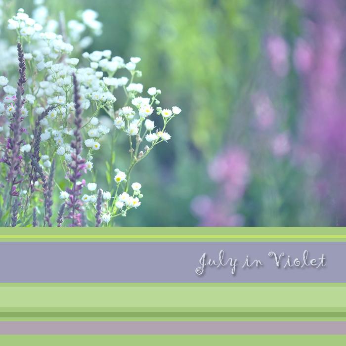 July in Violet